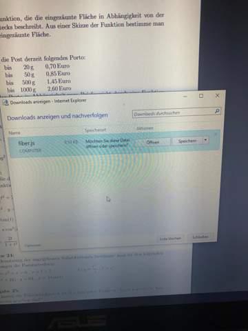 Wie soll diese Fiber.js Datei geöffnet werden?