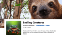 Microsoft veröffentlicht neue Frühlings-Wallpaper-Sets für Windows 10