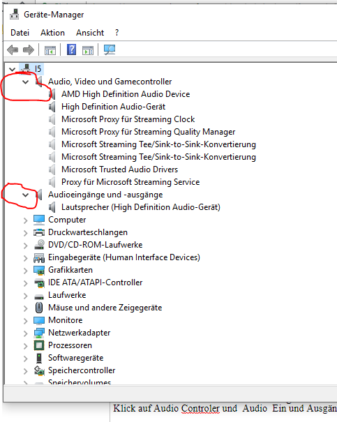 Realtek Audio Manager macht Probleme