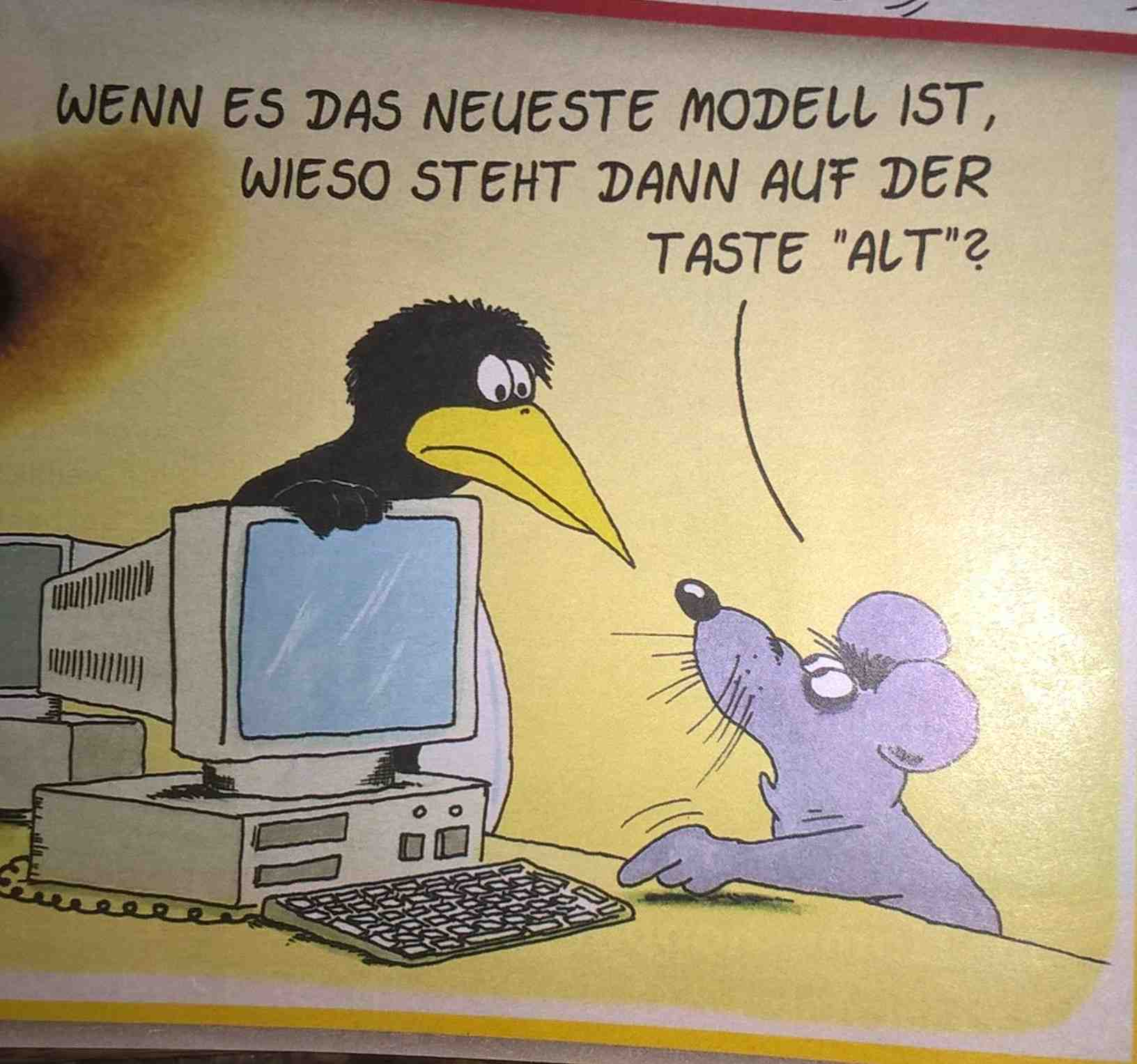 Stein-ALT.jpg